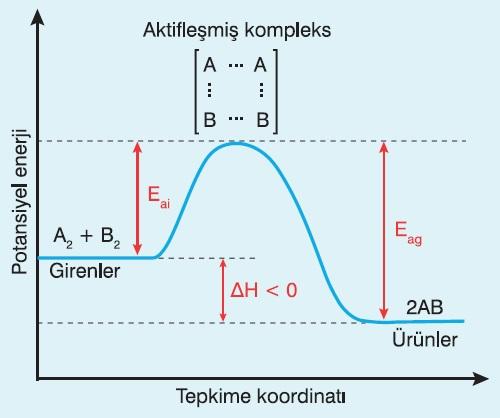 Ekzotermik Bir Tepkimenin Enerji -TK Grafiği