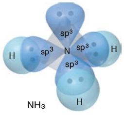 NH3 Molekülünün Orbital Yapısı