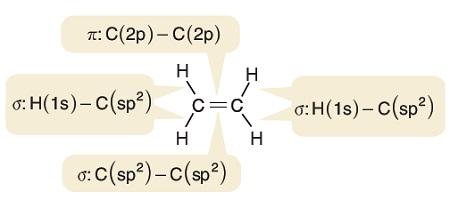 Etilen Molekülünün Sigma ve Pi Bağlarının Oluşumu