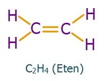 Etilen Molekülü