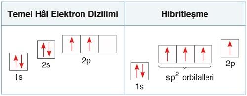 C Atomunun sp2 Hibritleşmesi