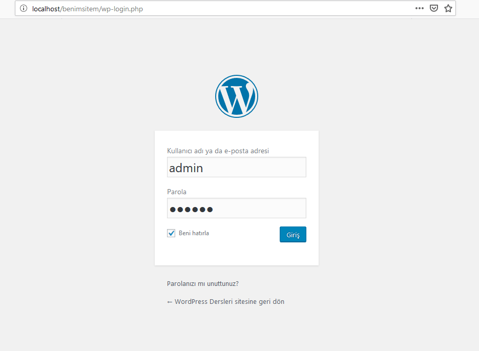 wordpress-admin-girisi